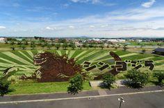Godzilla aparece no norte do Japão, em forma de incrível obra arte, em uma plantação de arroz incrível