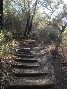 Hiking- Santa Monica Mountains