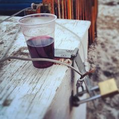Relaxing at Tybee by Brent Phillips, via Flickr