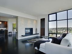 Living - modern - living room - seattle - Logan's Hammer Building & Renovation