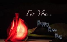 Top 25  Romantic Happy Rose Day 2016 SMS, Quotes,