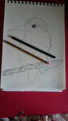 In progress: kingfisher