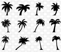 Palm Tree #Silhouettes illustration vector download graphics
