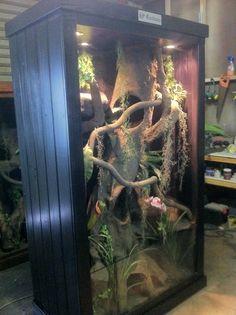 Reptile Enclosure with aquarium   https://www.facebook.com/pages/HP-Customs-Custom-Reptile-Enclosures/572704122760765