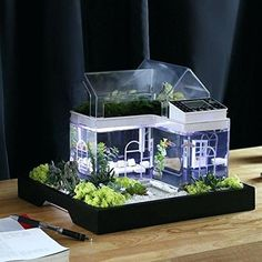 Have you heard of aquaponics? Aquaponics Combines the Growing of Fish and Plants You may grow plants in water and without soil and once one does this together with growing fish you are practicing aquaponics. Betta Aquarium, Betta Fish Tank, Beta Fish, Tropical Aquarium, Unique Fish Tanks, Small Fish Tanks, Cool Fish Tanks, Modern Fish Tank, Fish Tank Terrarium