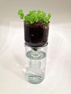 Self Watering Planter Wine Bottle Planter by RecastGlass on Etsy