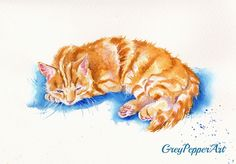 """https://flic.kr/p/sg5qG3 