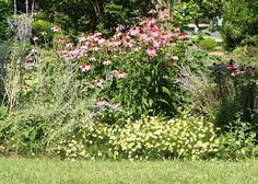 Design a perennial flower bed for blooms from spring to fall