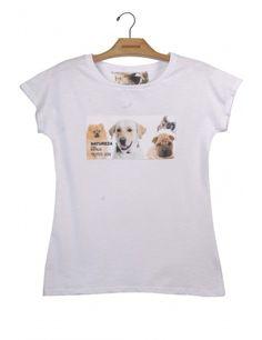 camiseta algodão lulu da pomerânia, labrador, vira e sharpei www.usenatureza.com #UseNatureza #JeffersonKulig