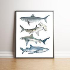 Baby Boy Nursery Room Ideas Ocean Kid Bathrooms Ideas For 2019 Shark Bedroom, Shark Nursery, Ocean Nursery, Nursery Room, Ocean Bedroom Kids, Nursery Ideas, Boys Nautical Bedroom, Bedroom Ideas, Ocean Room