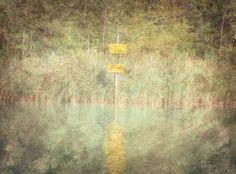 Segnali acquatici in laguna