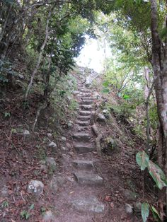 Steps to Nelson's View on Saddle Hill, Nevis