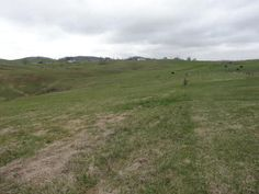 1 1/2 acre to build your new home in a great neighborhood of Rolling Hills in Lewisburg of Greenbrier County Give Tom Johnson a call/text for complete info 3046678988