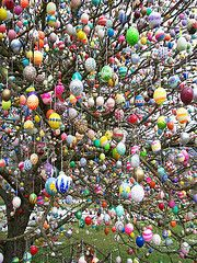 Easter Tree....somebody got paid to do this.........so much work.....imagine feeling the eggs :)