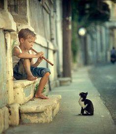 Niño tocando flauta para gato