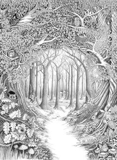 Coloring Pages for adults/ look whose peeking inside the tree/ beautiful scenery + the animals