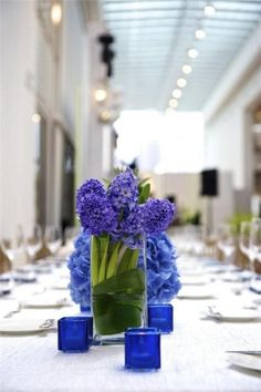 Blue centerpieces! Love it. Periwinkle blue hyacinth, with cornflower blue hydrangeas behind. Cobalt blue votives too!
