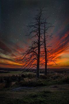 Sunset (Finland) ... Winter Trees and Stars | by Matti Lehtinen on Ethereal Vistas