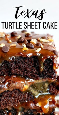 The perfect combination of chocolate, pecans, and caramel! You are going to LOVE this amazing Texas Turtle Sheet Cake! Sheet Cake, Texas Sheet Cake, i am baker dinner couple Texas Turtle Sheet Cake {VIDEO} Baking Recipes, Cookie Recipes, Bakers Chocolate, Chocolate Frosting, Chocolate Sheet Cakes, Chocolate Cake With Caramel, Non Chocolate Desserts, Chocolate Chips, White Chocolate