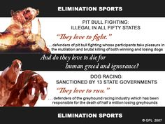 We hear it all the time . . .  Greyhound Protection League (USA)