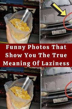 #Funny #Photos #Show #True #Meaning #Laziness# Purple Night Lights, Curtain Tie Backs Diy, Best Eyelash Growth, Cheap Mouse, Antique Phone, Custom Embroidered Patches, Sequin Backpack, Satchel Backpack, Stylist Tattoos