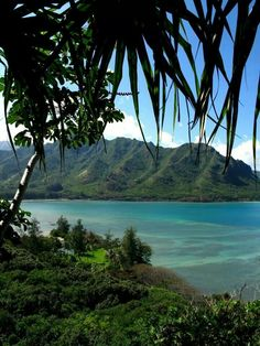 View of Kahana Bay from the Crouching Lion Hike...(Oahu, Hawaii)
