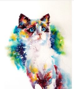 I haven't drawn this cat but it's so beautiful! ❤️ love it!