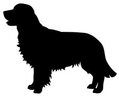 Golden Retriever Dog Silhouette vector art illustration