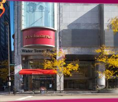 Located in the famous Water Tower Place, the American Girl Place Chicago is every little girl's dream! More than a store, the American Girl Store is home to the AG Café & the perfect place to hold parties & events!