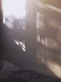 October 11th by @patsysussex #photography #light #morning