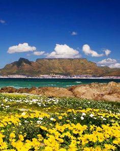 O trajeto de 316 quilômetros, batizado de Rota Jardim (Garden Route), entre Port Elizabeth e a Cidade do Cabo, em meio ao Parque Nacional de Table Mountain, é a única estrada em todo o mundo que costeia os oceanos Atlântico e Índico. Seu nome certamente não é a toa: em um país de paisagens marcadas pela seca savana, o verde toma conta de quase todo o percurso.
