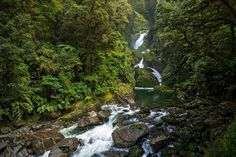 Milford Track, New Zealand | Mackay Falls by Nisa & Ulli Maier on 500px