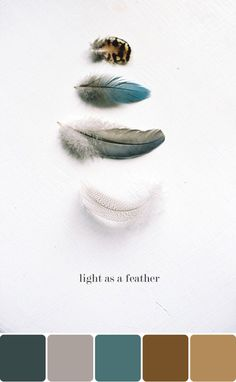 light-as-a-feather-pic-me-a-palette-scoutblog