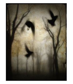 Gothic Crows and Trees photograph At dusk Surreal by gothicrow