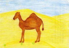 Waldorf ~ 4th grade ~ Human & Animal ~ Camel ~ main lesson book