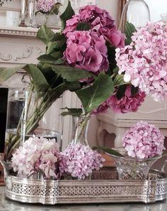 Hydrangeas at home. My Flower, Flowers, Hydrangeas, Glass Vase, Plants, Home Decor, Decoration Home, Room Decor, Plant