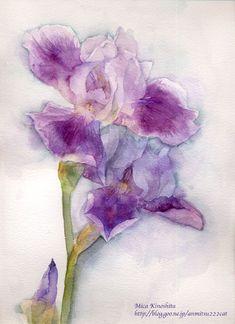 为什么春天过去,花朵依旧盛开? - 飞乐鸟文章