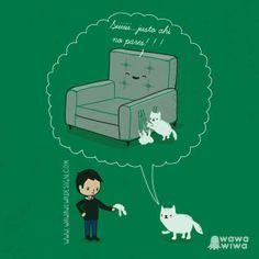 He aquí la razón, por la que los mininos arañan el sofá...aisss, si es que no los entendemos!
