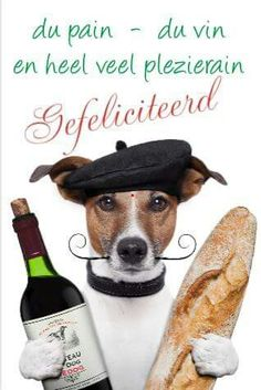 French Dog Wine Baguete Beret Stock Image - Image of france, beret: 26562361 French Dogs, Happy Birthday Wishes, Birthday Greetings, Jack Russell Terrier, Birthday Quotes, Birthday Images, How To Stay Healthy, Healthy Man, Cute Animals