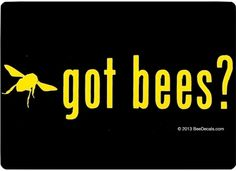 Got Bees - Honey Bee Car Window Decal - Car Sticker - Beekeeper Bumper Sticker - We love bees by VillageVinyl on Etsy https://www.etsy.com/listing/90543571/got-bees-honey-bee-car-window-decal-car
