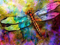 Dion Dior & More. Acrylic Dragonfly