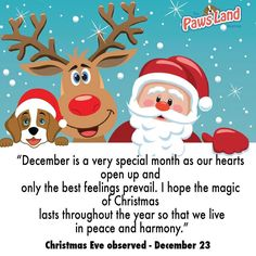 #december is so special and we love it #almost #christmas  #dogs #onlineboutique #cats