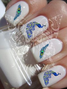Peacock -Peacock Feathers Nail Art Nail Water Decals Transfers Wraps