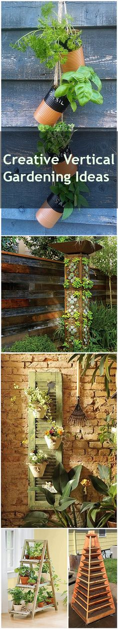 Creative Vertical Gardening Ideas- Great ideas for gardening in small or confined spaces, or for beautiful vertical garden designs.