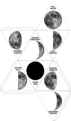 Create tour own Moon Phases for astronomy (middle ages lesson) 8th Grade Science, Middle School Science, Elementary Science, Science Classroom, Teaching Science, Science Education, Physical Science, Science Resources, Science Lessons