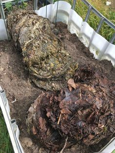 Fermentera ogräs med EM Aktiv på kort tid – Mikrojord Garden Compost, Garden Soil, Garden Inspiration, Gardening Tips, Leaves, Plants, Outdoor, Permaculture, House