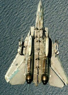 F 14 Tomcat in inverted flight ( taken by his colleague above his jet )