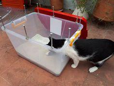 iFCOW Pala de Arena para Gatos