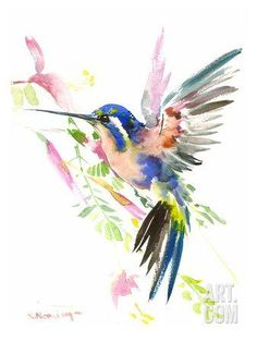 Hummingbird Flying Art Print by Suren Nersisyan at Art.com