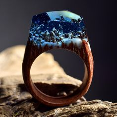 Miniature worlds inside the wooden rings. (8 foto). Beautiful pictures